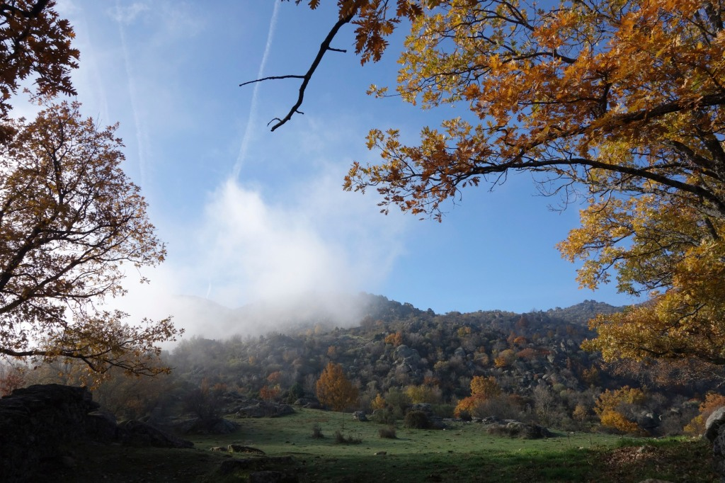 Autumn in the sierra near El Escorial